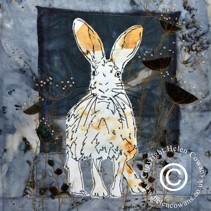 Shaggy blue hare copyright